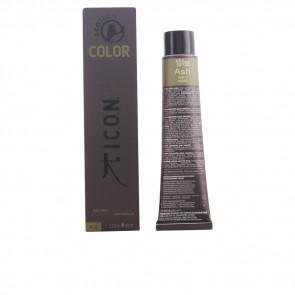 I.C.O.N. Ecotech Color - 101ss ash