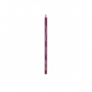 Wet N Wild Color Icon Lipliner - E664C Fab fuchsia