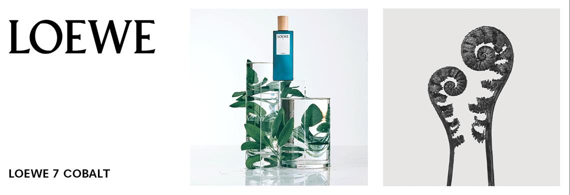 Loewe 7 Cobalt Perfume